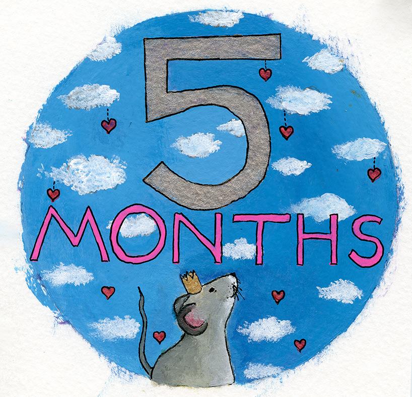 5-Months